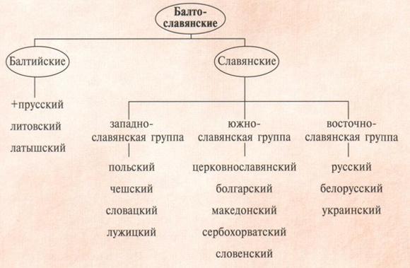 Презентация - русский язык как развивающееся явление