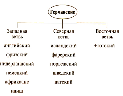 Балтийская и славянская языковые группы являются близкородственными ветвями семьи индоевропейских языков.