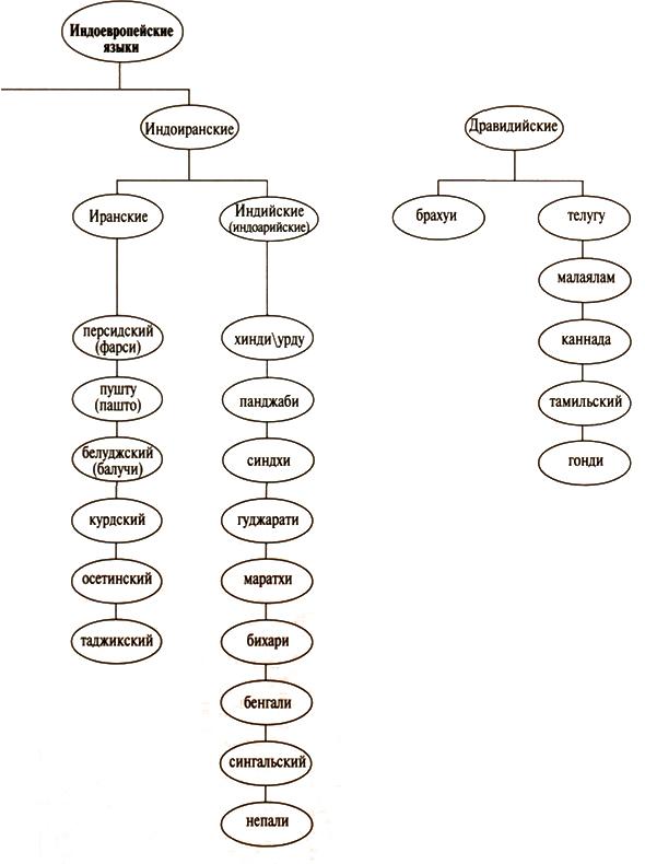 Чтобы выяснить генетические связи этих языков с другими индоевропейскими языками, вернитесь на страницу 40.